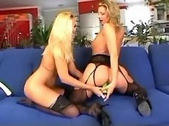 Sexual lesbians in stockings spread legs for toys